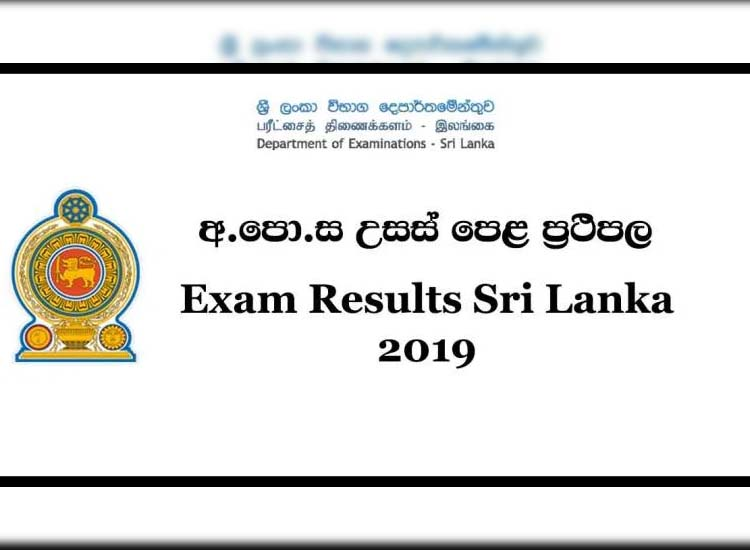 A/L results released